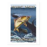 Trucha que pesca la sección representativa - panad postal