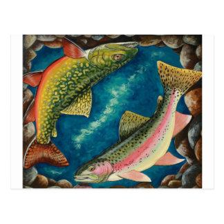 Trucha y trucha arco iris de arroyo tarjeta postal