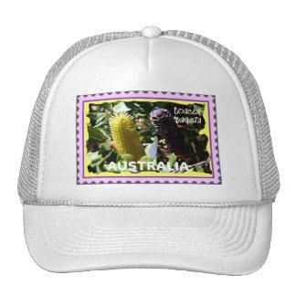 TRUCKER CAPS TRUCKER HAT