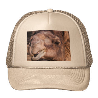 Trucker Hat with Smirking Camel Face