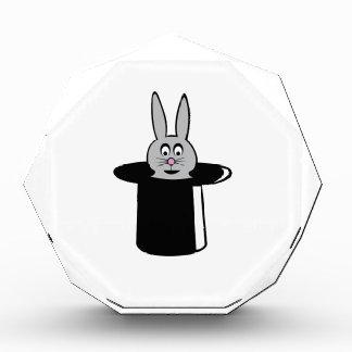 Truco del conejo