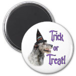 Truco del Wolfhound irlandés Imán Redondo 5 Cm
