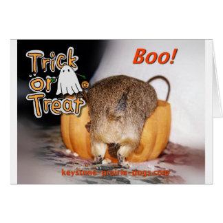 Truco o invitación de Halloween Tarjetón