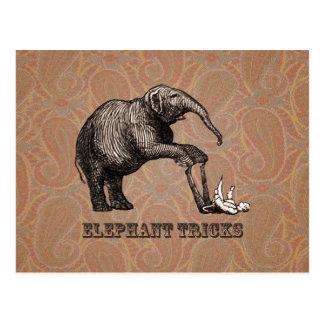 Trucos del elefante - Pachyderm divertido del Tarjeta Postal