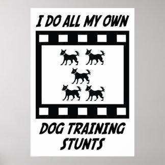 Trucos del entrenamiento del perro póster