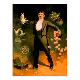 Trucos mágicos de las palomas de los rosas de los tarjetas postales