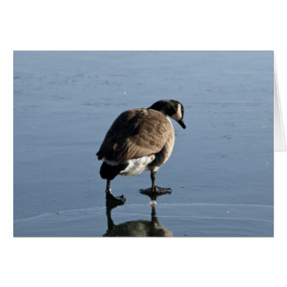 Trudge - Goose Greeting Card