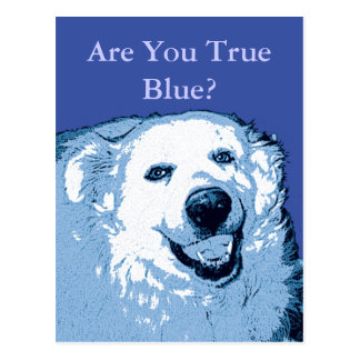 True Blue Dog Democrat postcard