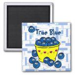 True Blue Fridge Magnets