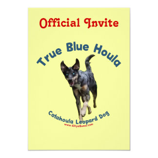 True Blue Houla Catahoula Dog Personalized Announcements