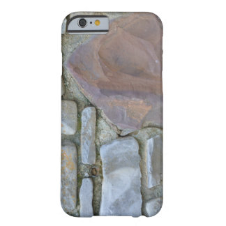True Camo Stone Path iPhone Case
