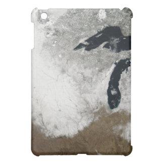 True-color image of snow iPad mini cases