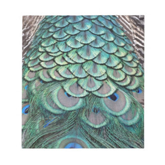 True Colors Peafowl Feathers Notepad