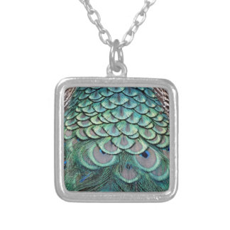 True Colors Peafowl Feathers Silver Plated Necklace