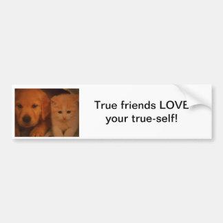 True friends Bumper sticker Car Bumper Sticker