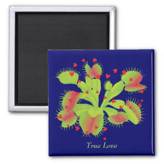 True Love for Venus Flytraps 2 Inch Square Magnet