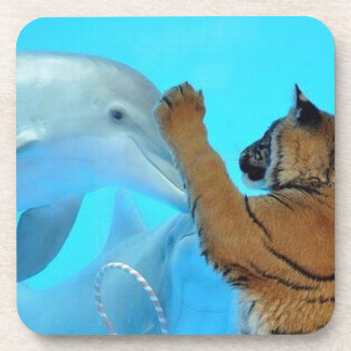 True Love: Friendship: Dolphin and Tiger meet. Coasters