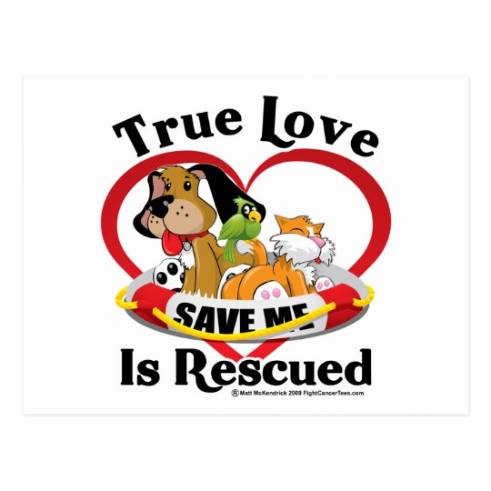 True Love is Rescued Postcard