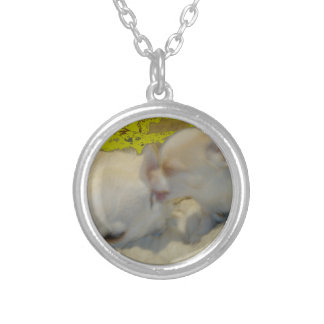 True Love Necklace or Locket