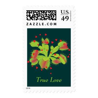 True Love Venus Flytrap Postage