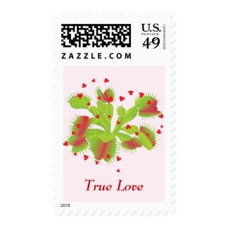 True Love Venus Flytrap Postage Stamps