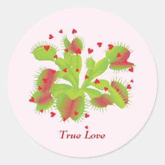 True Love Venus Flytrap Stickers