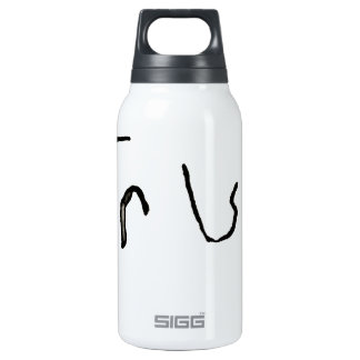 True or False Insulated Water Bottle