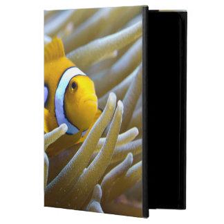 True Percula Clownfish in Anemone iPad Air Covers