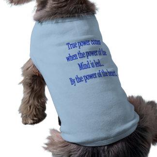 True Power comes when.... Shirt