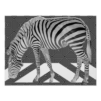 True Zebra Poster Print