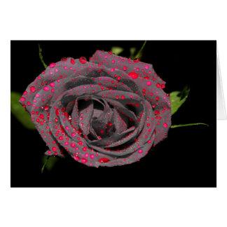 TrueLife Color Splash Rose Card