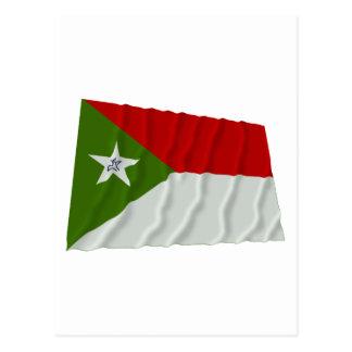 Trujillo Waving Flag Postcard