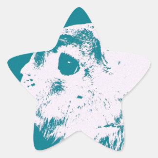 Trullo enano del conejo de Netherland Pegatina En Forma De Estrella