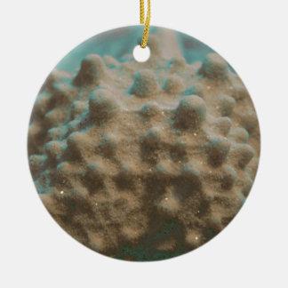trullo esquelético y black.jpg de las estrellas de adorno navideño redondo de cerámica