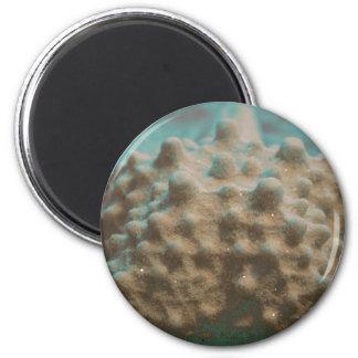 trullo esquelético y black.jpg de las estrellas de imán redondo 5 cm