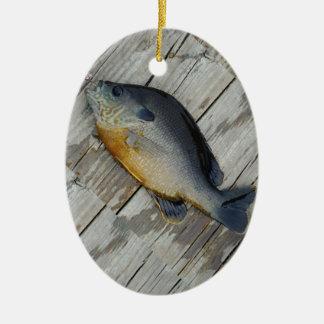 trullo púrpura amarillo azul, pescado del Lepomis  Ornamento De Navidad