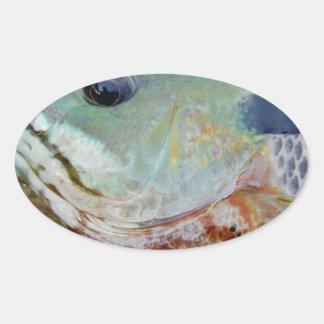 trullo púrpura amarillo azul, pescado del Lepomis Pegatina Ovalada