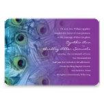Trullo y púrpura 1112a determinado del pavo real d invitacion personalizada
