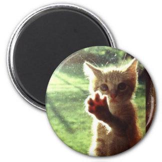 Truman in kitchen window 2 inch round magnet