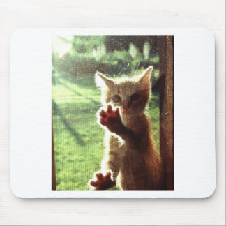 Truman in kitchen window mouse pad