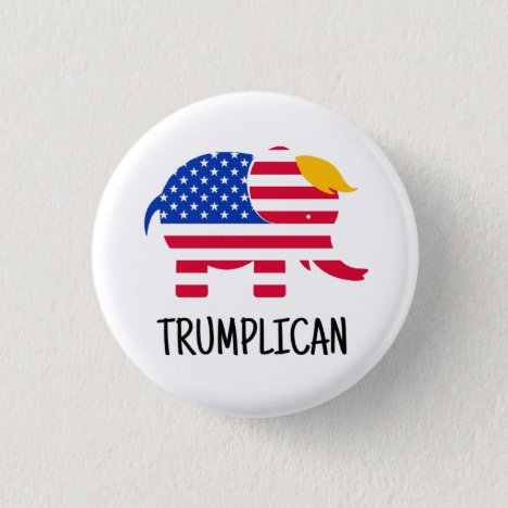 Trump Election 2020 Campaign Novelty Gift Button