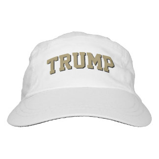 Trump. Republican. Plain & Simple. Hat