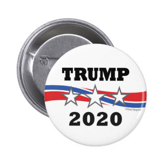 Trump Stars and Stripes 2020 Politcal Campaign USA Button