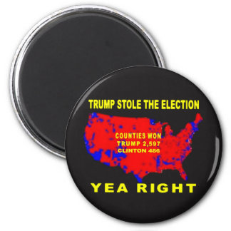TRUMP STOLE THE ELECTION MAGNET