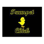 Trumpet Chick Postcard