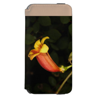 Trumpet Creeper iPhone 6/6s Wallet Case