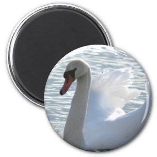 Trumpet Swan Magnet Refrigerator Magnet