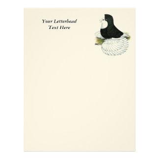 Trumpeter Pigeon Black Baldhead Letterhead