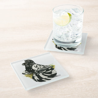 Trumpeter Pigeon Dark Splash Glass Coaster
