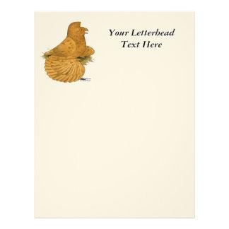 Trumpeter Pigeon Deroy Letterhead